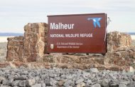The Malheur Occupation